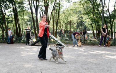 Показательное выступление, Киев 22.08.2020.